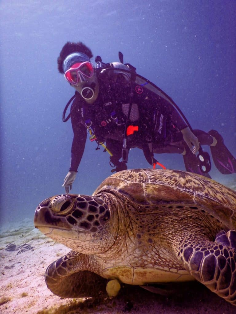 Scuba Diving In Koh Tao, Thailand – The Complete Guide