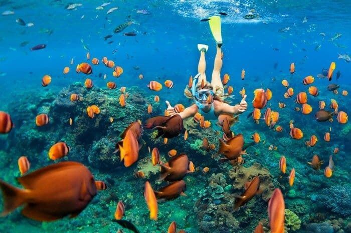 How To Snorkel – A Beginners Guide