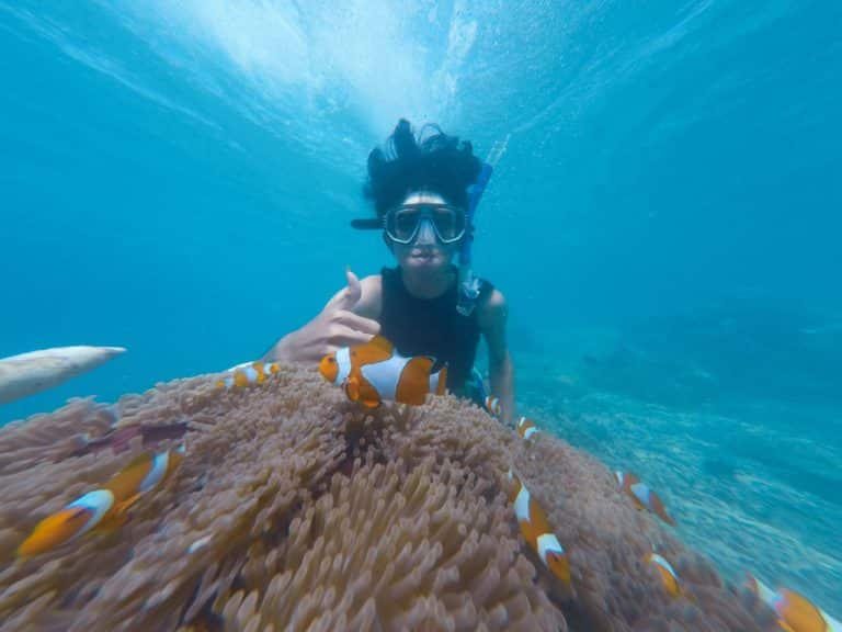 How To Choose a Freediving Mask – Buying Guide