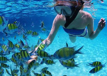 Best Places To Snorkel In Costa Rica [Top 5 Dive Sites]