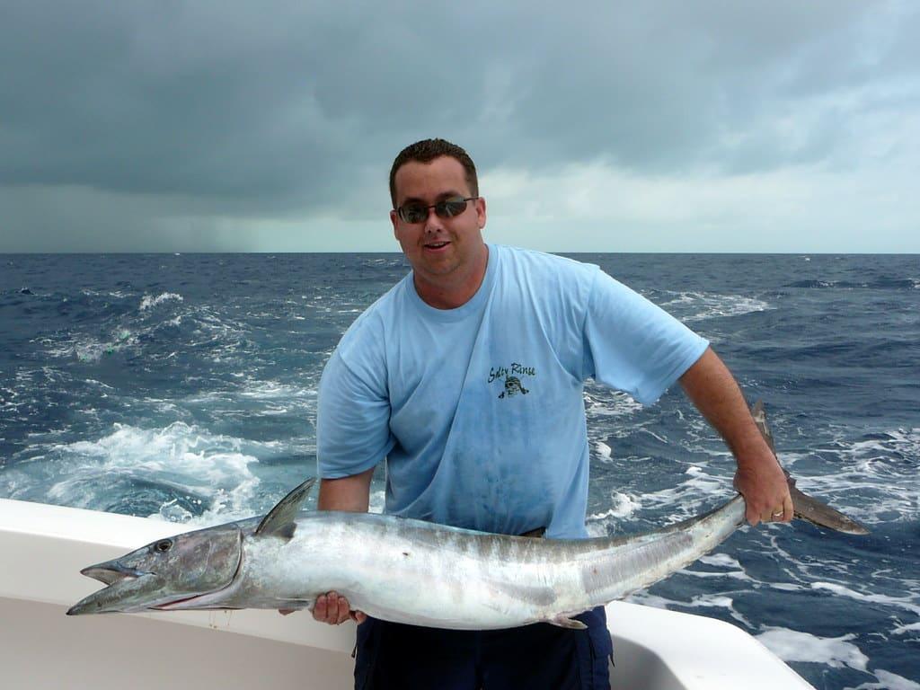 best bait for wahoo