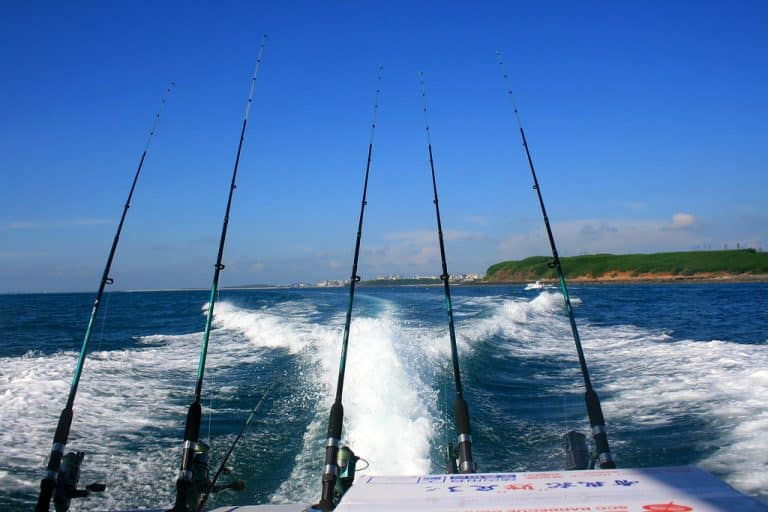 Best Bait For Deep Sea Fishing – What Will Land Me More Fish?