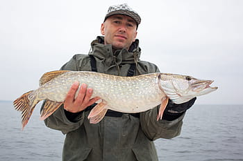 best lures for pike