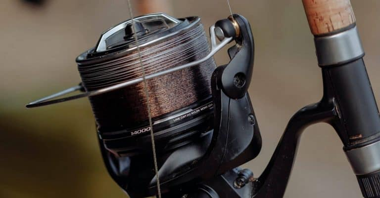 Best Braided Fishing Lines – Our Top 6 Picks