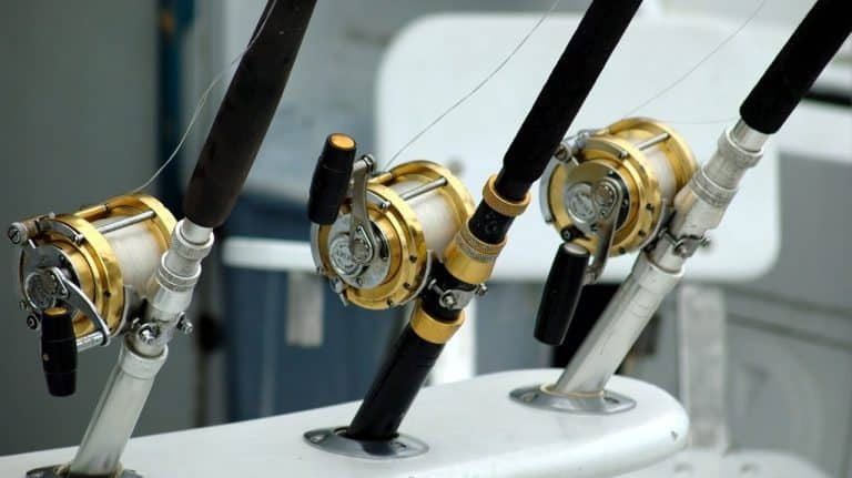 7 Best Fluorocarbon Fishing Lines For Baitcasting & Spinning