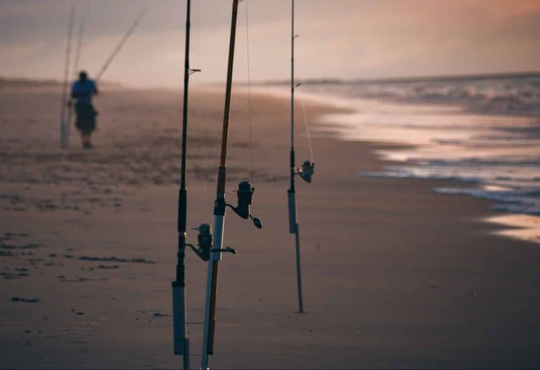 Is Fishing At High Tide Better?
