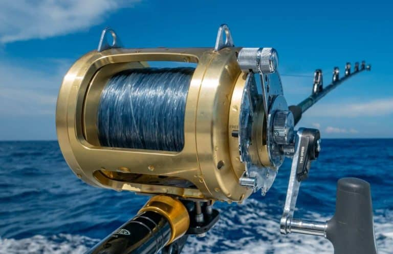 How To Choose The Best Fishing Line Color