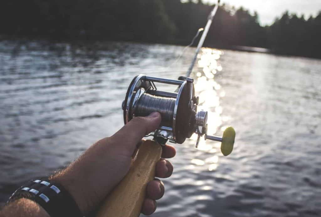 type of reels for fishing