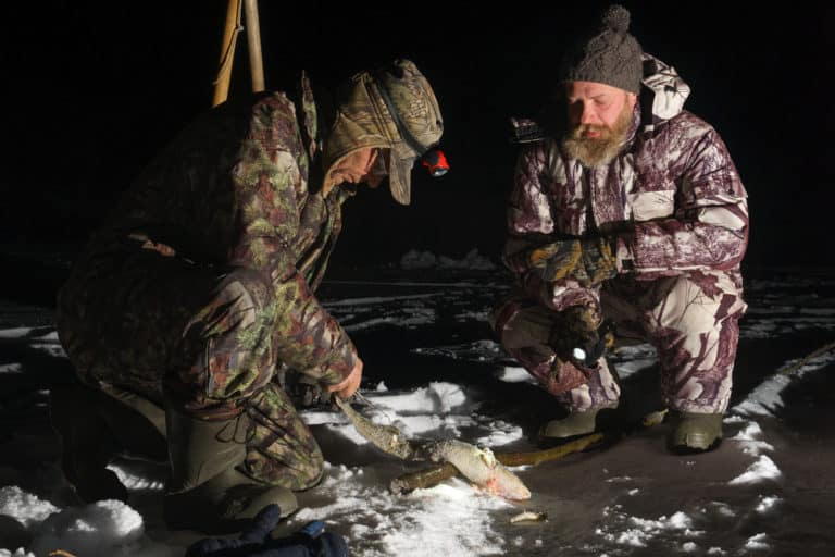 Ice Fishing At Night For Pike
