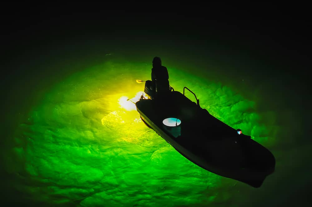10 Best Crappie Lights for Night Fishing