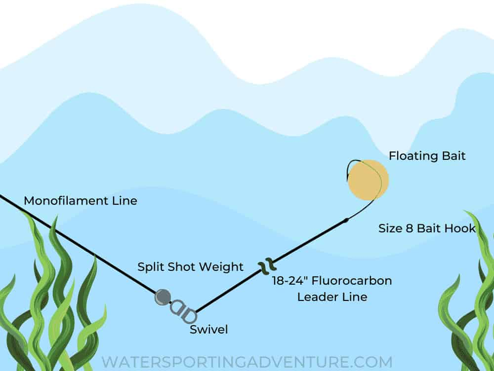 Diagram showing how to set up a split shot trout fishing line